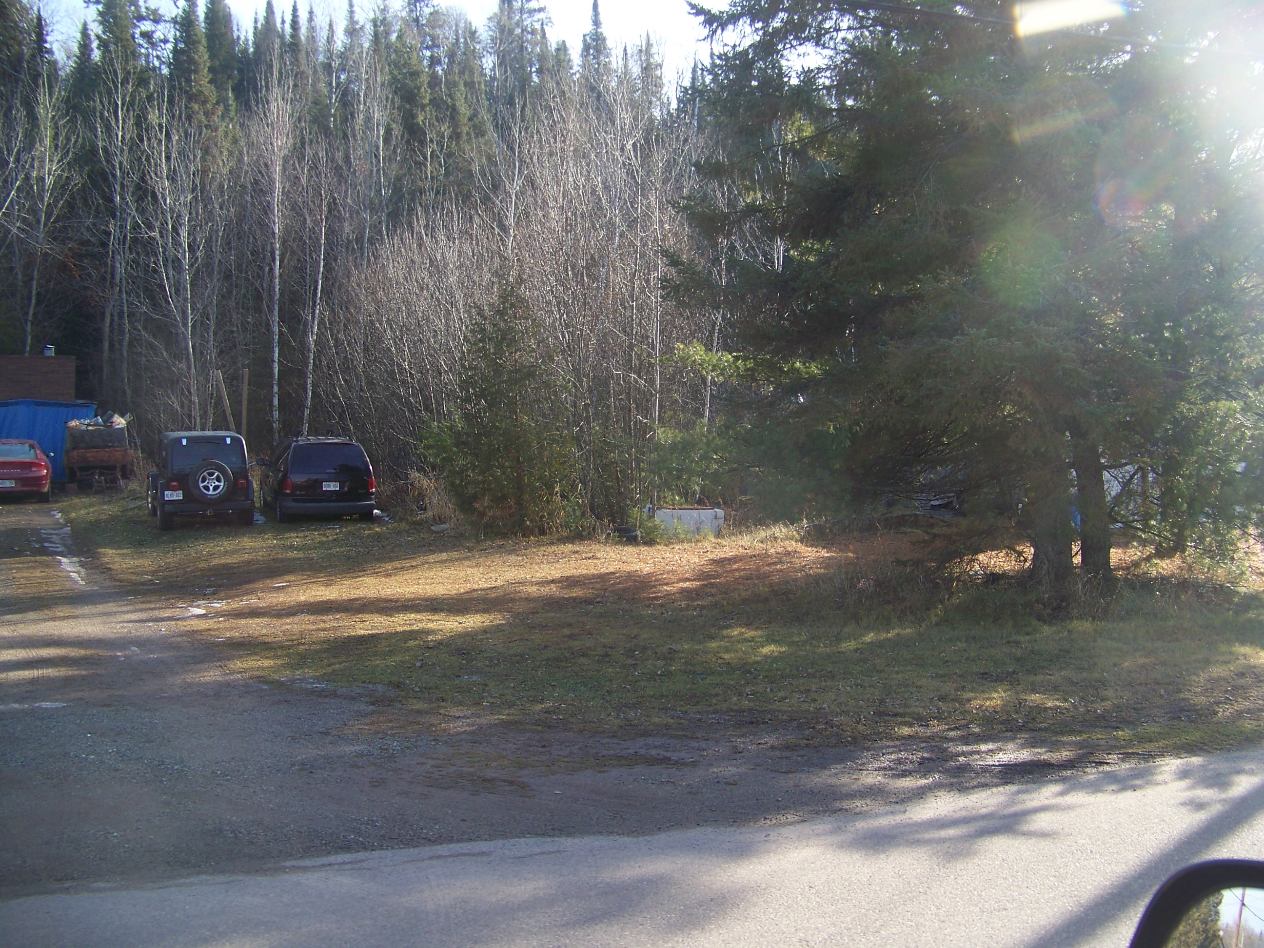 woodland area with parking lot